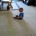 Dog Entertains a Child