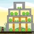 Chuk Norris vs Angry Birds