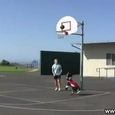 Awesome Basketball Dog