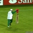 Dog On The Field During Match
