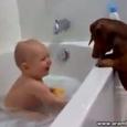 Funny Baby Taking a Bath