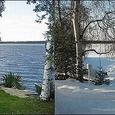 Summer vs Winter