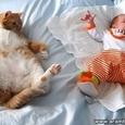 Laps ja kass
