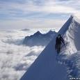 Amazing Photo of Nature