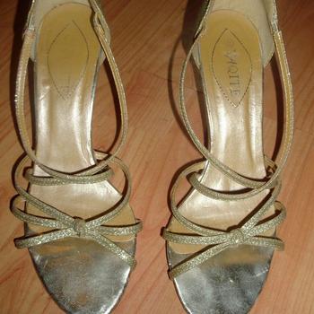 Kuldsed kingad (40)